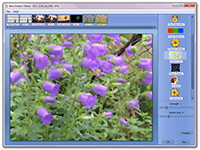 artistic filters software